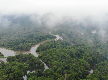 Menjaga Papua, Memelihara Ekosistem Dunia